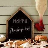 Plucked turkey and text happy thanksgiving Stock Photos