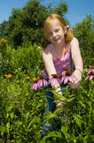Plucking flowers Royalty Free Stock Images
