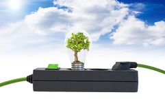 Plug bar with a tree in a light bulb and cubes go green. Plug bar with a tree in a light bulb royalty free stock image