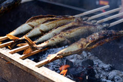 Plug-in fish on the grill Royalty Free Stock Image