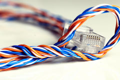 Plug wire color lan. Plug wire different color cable lan on a white Stock Photography