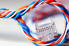 Plug wire color lan. Plug wire different color cable lan on a white Royalty Free Stock Image