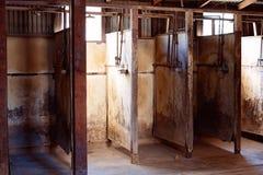 Plugawi prysznic kramy Używać Złocistymi górnikami obrazy stock