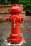 Plugue de incêndio vermelho Fotografia de Stock Royalty Free