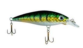 Plugue (pesca) Fotografia de Stock