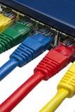 Plugues coloridos da rede conectados ao router Fotos de Stock