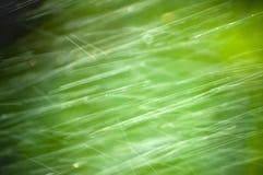 Pluie abstraite Image libre de droits