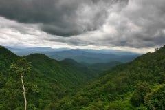 Pluie au-dessus de la forêt humide Images stock