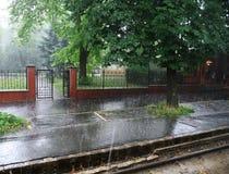 Pluie d'été Photo libre de droits
