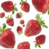 Pluie de fraises Image stock