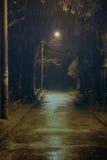 Pluie de l'hiver Photo libre de droits