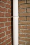 pluie de pipe Photographie stock libre de droits