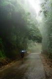 Pluie et brouillard dans Sapa-Viet Nam Photographie stock