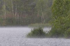 Pluie forte d'été Photographie stock libre de droits