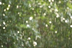 Pluie illuminée par une lumière du soleil images stock