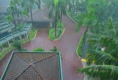 Pluie lourde commune de déluge dans le pays tropical dans une belle station de vacances avec l'abondance des palmiers grands