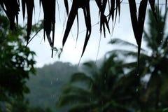 Pluie provinciale image libre de droits
