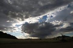 Pluie sur la savane Images stock
