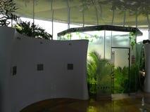 Pluie tropicale - bain d'eau bouillante Photos libres de droits