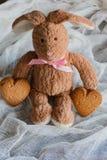 Pluizig stuk speelgoed konijntje met koekjes in de vorm van harten prentbriefkaar Stock Afbeeldingen