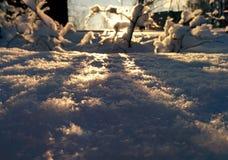 Pluizige sneeuw stock afbeelding