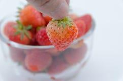 Pluk aardbeien in een kom Royalty-vrije Stock Fotografie
