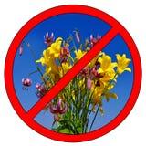 Pluk geen bloemen Stock Foto