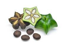 Plukenetia volubilis, sacha inchi, sacha peanut  on whit Stock Images