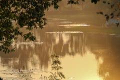 Plumón brumoso en el río fotos de archivo libres de regalías