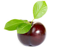Plum. With leaves isolated on white background Royalty Free Stock Photography