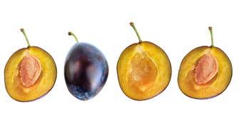 Plum. Ripe plum fruit on white background Stock Photo