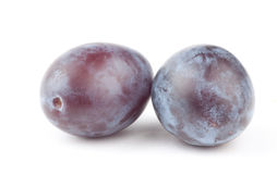 Plum Stock Images