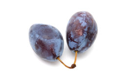 Plum. Two ripe plums on a whute background royalty free stock image