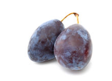 Plum. Two ripe plums on a whute background royalty free stock photo