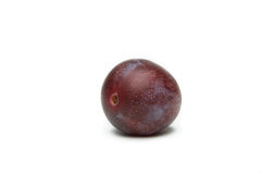 Plum. One plum on a white background stock image