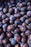 Plum. Fruit in the box Royalty Free Stock Photography