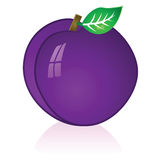 Plum. Glossy illustration of a ripe purple plum Stock Photo