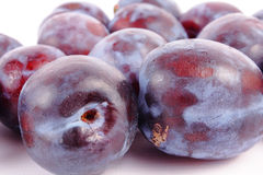Plum. Ripe plum on white background (isolated, clipping path Royalty Free Stock Photography