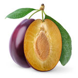 Isolated plums royalty free stock images