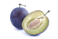 Plum 2 Stock Photo