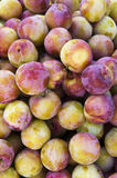Plum. Is the summer of people's favourite fruit, This kind of fruit is very high nutritional value royalty free stock photography