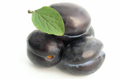 Plum. Fruits royalty free stock photography