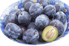 Plum 3 Royalty Free Stock Image
