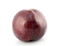 plum Obraz Stock