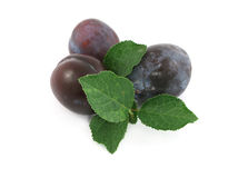 Plum Stock Photos