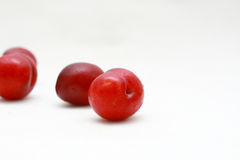 Plum. Red plums isolated on a white background stock images