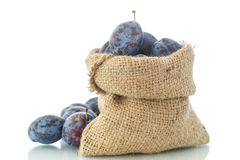 Plum in the bag Royalty Free Stock Photography