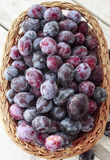 Plum basket top view. Basket full of riped plums, top view Royalty Free Stock Image
