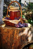 Plum and berries in the basket Stock Images
