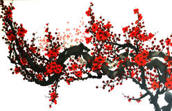 Plum blossom. China wash a plum blossom Stock Photography